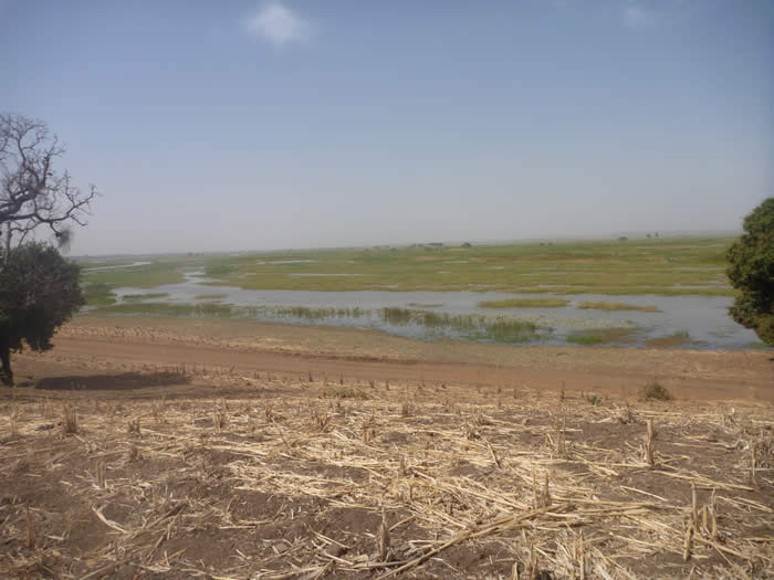 View of the Niger River from a settlement mound during 'Crossroads of Empires' field season 2013